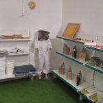 יש כאלה שעושים סיור קברי צדיקים, אני עושה סיור חנויות דבורים