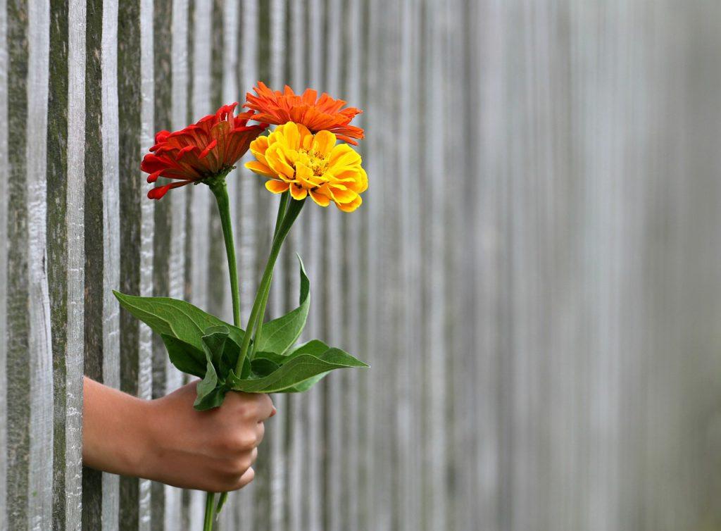 hands & flower